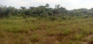 Land for sale Epe, Lagos Epe Lagos - 0