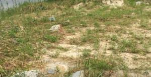 Mixed   Use Land Land for sale Web Road, By Kingsway Road Ikoyi Lagos