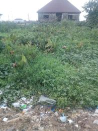 Residential Land Land for sale Around Christ Embassy church, opposite Nipco filling station bus stop. Ago palace Okota Lagos