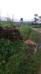 Land for sale Back of Anglican church by Alakahia playground Choba Port Harcourt Rivers - 0