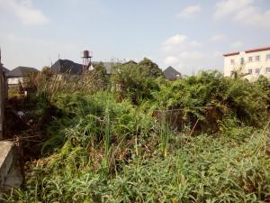 Residential Land Land for sale Amuwo Odofin Amuwo Odofin Lagos