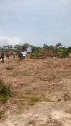 Land for sale Ibeju Eleranigbe Ibeju-Lekki Lagos - 0