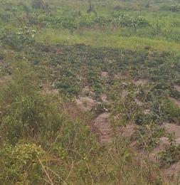 Mixed   Use Land Land for sale Erikite , oglo new site Aradagun Badagry Lagos - 0