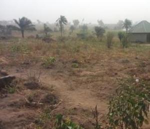 Residential Land Land for sale Opp airforce check points  Makurdi Benue