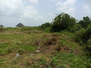 Land for sale Alaoma Residential Nekede Layout Owerri Imo