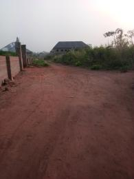 Residential Land Land for sale After Asaba International airport, opposite Okpanam junction, Asaba Delta