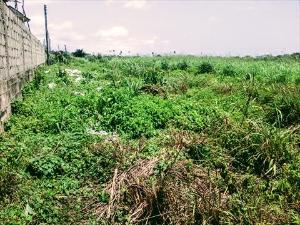 Serviced Residential Land Land for sale Onitsha Owerri Road, Ogbaku, By Winners Chapel Camp Site Owerri Imo