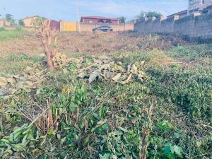 Residential Land Land for sale Road6, Oke- Ibadan Estate, Ibadan Iwo Rd Ibadan Oyo