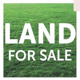 Residential Land Land for sale Asokoro-Abuja. Asokoro Abuja