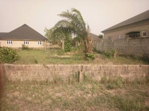 Residential Land Land for sale Igbopa estate Igbogbo Ikorodu Lagos