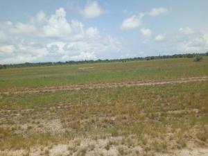 Land for sale Ibeju lekki LaCampaigne Tropicana Ibeju-Lekki Lagos - 0