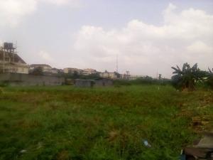 Commercial Land Land for sale Oba Akran Oba Akran Ikeja Lagos