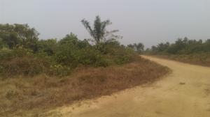 Land for sale Obio-Akpor Rivers