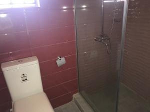 1 bedroom mini flat  Boys Quarters Flat / Apartment for rent Ikota Villa  Ikota Lekki Lagos