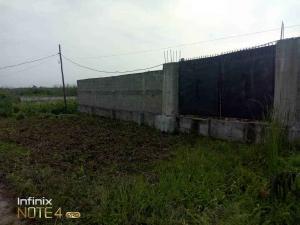 Residential Land Land for sale 0 Satellite Town Amuwo Odofin Lagos