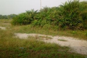 Land for sale Amen Estate Phase 2 Eleko Ibeju-Lekki Lagos - 0