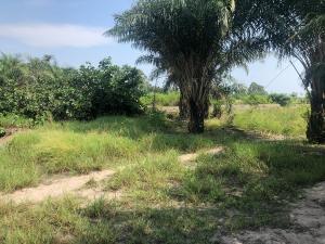 Land for sale Akodo (close to free trade zone) Ibeju-Lekki Lagos