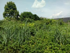 Land for sale Mcc Owerri Imo