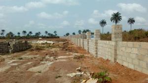 Land for sale AMAKAOHIA UBI Owerri Imo - 0