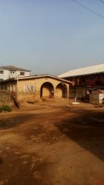 8 bedroom Detached Bungalow House for rent Lawyers Estate Agric Ikorodu Lagos