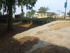 Industrial Land Land for sale Facing Major igando lasu road by igando bus stop Igando Ikotun/Igando Lagos