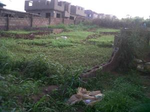 Residential Land Land for sale Victory Estate Idimu Ejigbo Ejigbo Lagos
