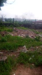 Residential Land Land for sale Bucknor Estate Isolo. Lagos Mainland  Bucknor Isolo Lagos