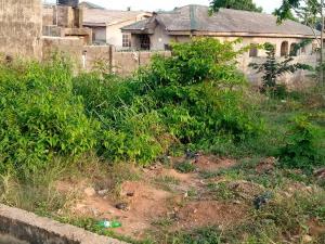 Residential Land Land for sale Agbelekale Abule Egba Abule Egba Lagos