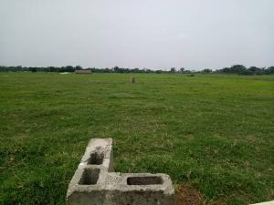 Land for sale SHIMAWA, MOWE OFADA OGUN STATE Ofada Obafemi Owode Ogun