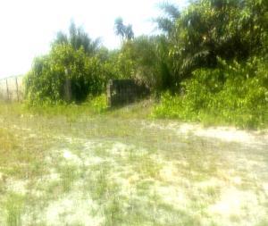 Mixed   Use Land Land for sale Just after the bridge Okun Ajah Ajah Lagos