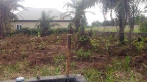 Residential Land Land for sale Akesan Igando Ikotun/Igando Lagos
