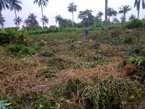Land for sale Badeku egbeda , Iwo road Iwo Rd Ibadan Oyo