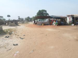 Mixed   Use Land Land for sale On the axis of asaba/benin express way. Asaba Delta