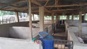 Commercial Land Land for sale Abebi Village, Aleba, Onidundu, Akinyele Local Government Ibadan Oyo