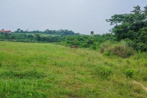 Mixed   Use Land Land for sale Agbowa Ikorodu Ikorodu Lagos