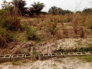 Commercial Land Land for sale Elerangbe close to the express Eleranigbe Ibeju-Lekki Lagos