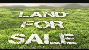Land for sale Imokun 1 and Imokun 2 Epe Road Epe Lagos