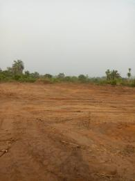 Mixed   Use Land Land for sale Aba road Owerri Imo