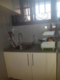 1 bedroom mini flat  Mini flat Flat / Apartment for rent by Elf Bus stop Lekki 1 R.H.S Lekki Phase 1 Lekki Lagos