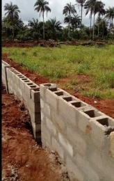 Land for sale Along Aba-Owerri road in Ngo-okpala community,Owerri Nortn LGA Ngor-Okpala Imo - 1