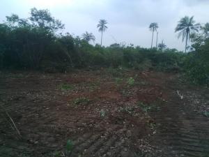 Land for sale Ngor-Akpala Ngor-Okpala Imo - 1