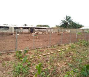 Mixed   Use Land Land for sale . Ewekoro Ogun
