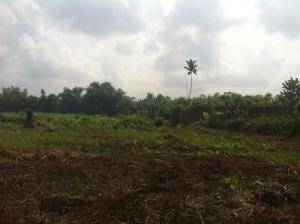 Industrial Land Land for sale Wasimi near Abeokuta. Adatan Abeokuta Ogun