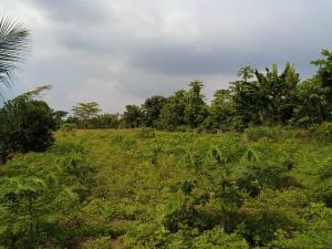 Land for sale Agbara Agbara-Igbesa Ogun