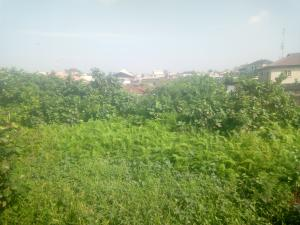 Land for sale Ilasan Lekki Lagos
