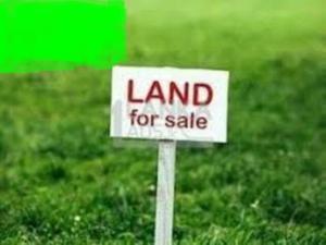 Residential Land Land for sale Oral Estate Lekki Lagos