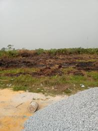 Mixed   Use Land Land for sale This property is just at the road side after ikate opposite builders mart Ikegun Ibeju-Lekki Lagos