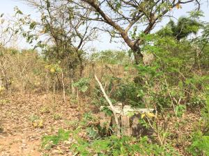Mixed   Use Land Land for sale Sabo  Oke-Ero Kwara - 0
