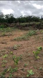 Land for sale Igbonla Epe Road Epe Lagos