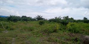 Land for sale Gbetu,Ogunfayo Ogogoro Ibeju-Lekki Lagos